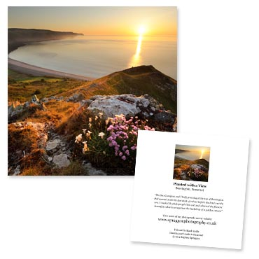 'Planted with a View' large greeting card featuring a coastal view from Bossington Hill, Somerset.