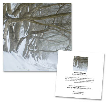 """Bliss in a Blizzard"" greeting card"