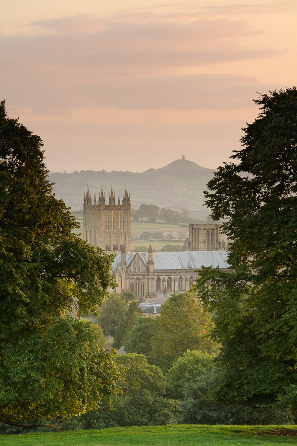 A pair of trees frame Wells Cathedral with Glastonbury Tor visible in the distance. Image © Stephen Spraggon.