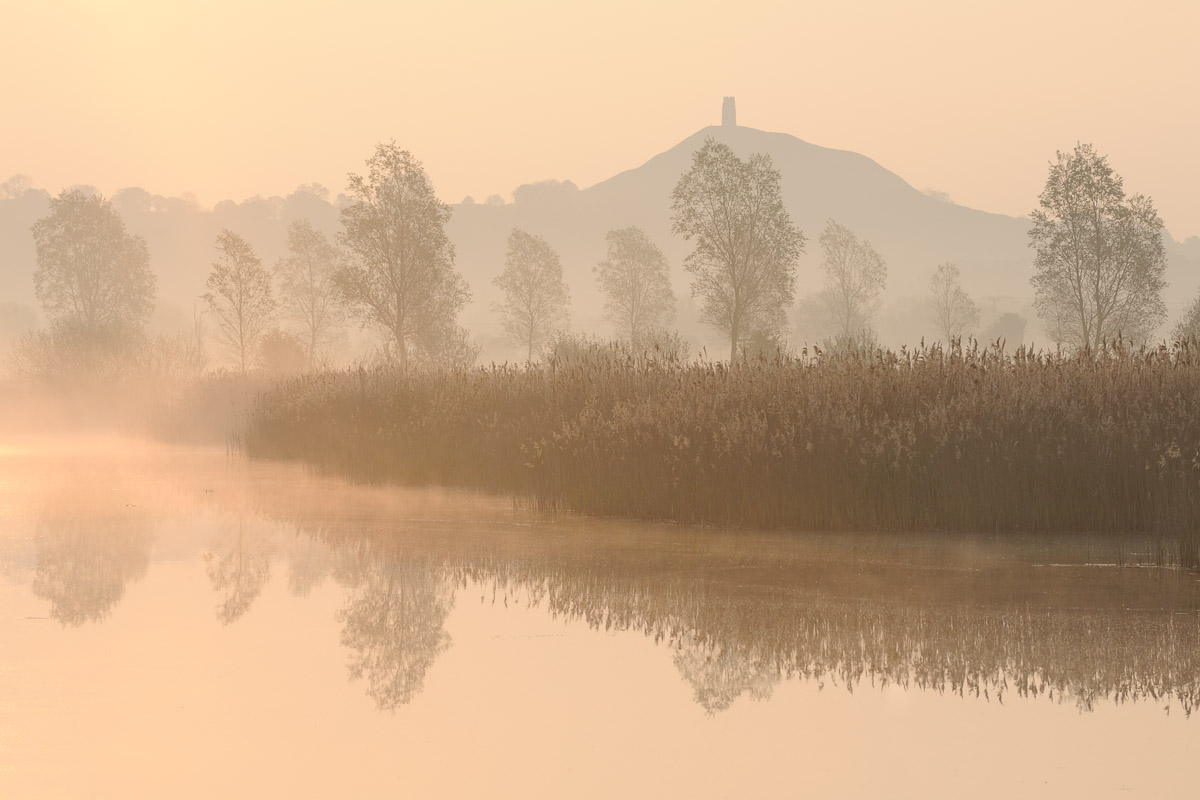 Glastonbury Tor seen from Sharpham Nature Reserve at dawn on the Somerset Levels, UK. Image © Stephen Spraggon.
