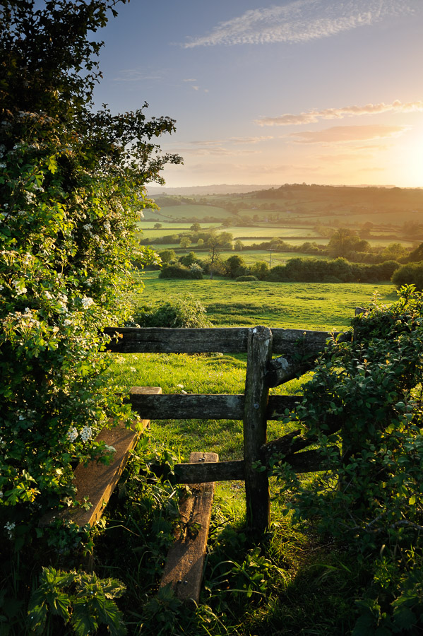 An old stile leading through a hedge into green countryside in Somerset, UK. Image © Stephen Spraggon.