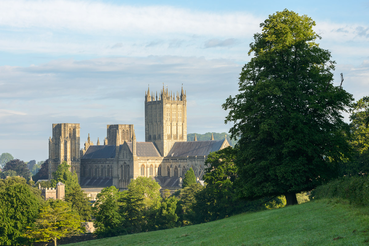 The east face of Wells Cathedral, Somerset, on a sunny summer morning. Image © Stephen Spraggon.